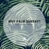 Why Palm Sunday?