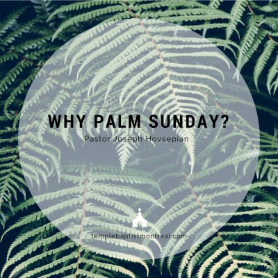 Why Palm Sunday?
