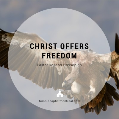 Christ Offers Freedom